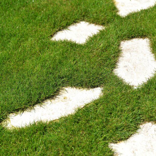 Stapstenen in het gras