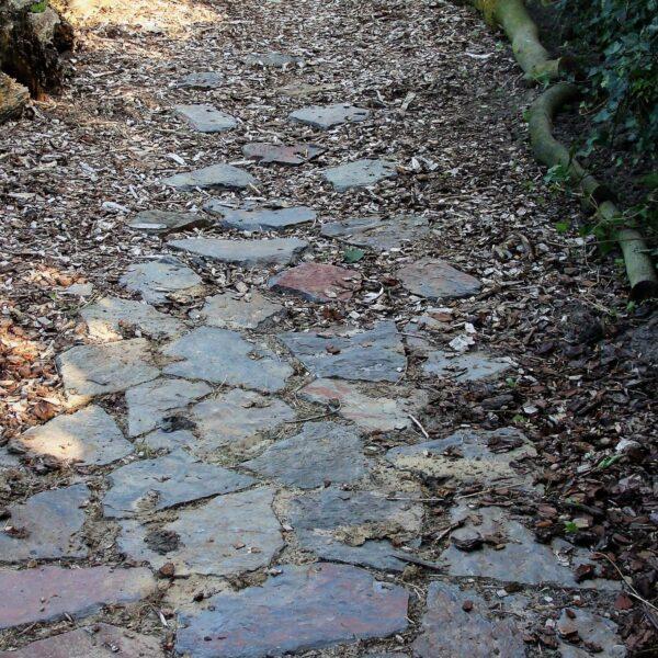 Overloop van Flagstones naar een pad van boomschors.