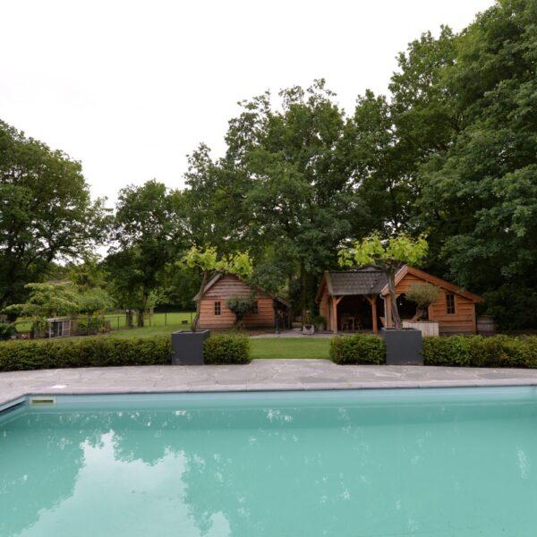 Alta Kwartsiet Flagstones rondom het zwembad.
