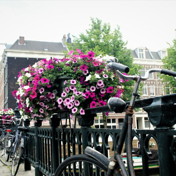 Sfeerfoto Amsterdam.