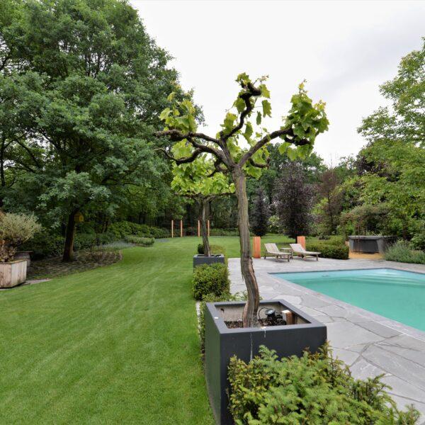 Tuinarchitectuur met Alta Kwartsiet Flagstones