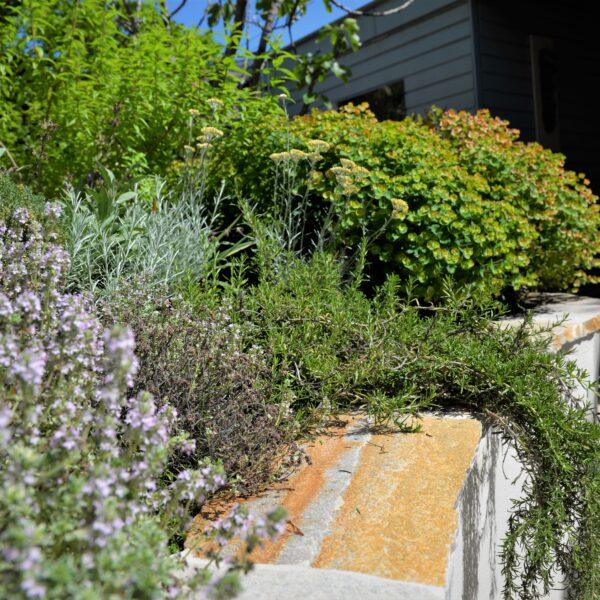 Flagstones als afdek steen - tuin